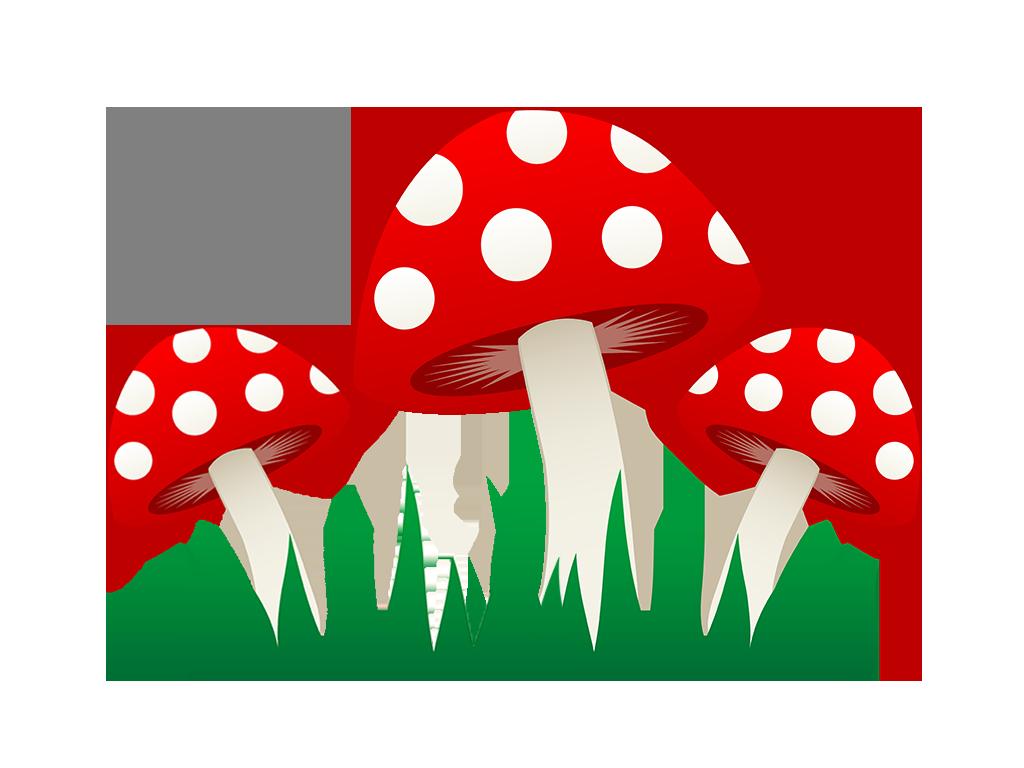 ciupercutele